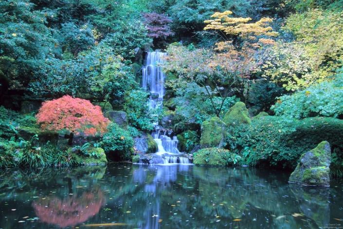 portland-japanese-garden-david-m-cobb-pic.jpg
