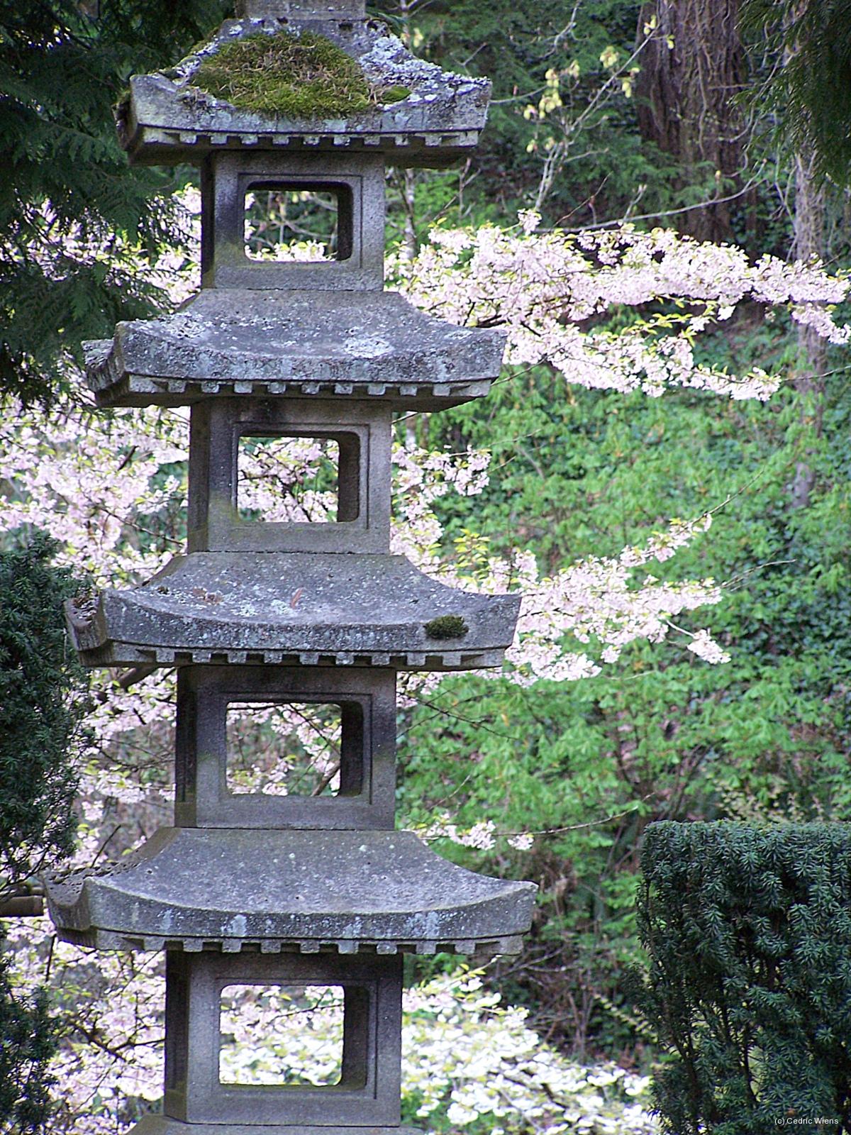Japanese Garden Photgraphs For You To Appreciate