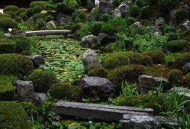 A Popular Common Element In A Japanese Garden And Zen Gardens Are Small  Coniferous Shrubs. Evergreens Provide Colour All Year Round And Will Help  Your Other ...